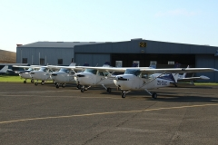 Line-up of Cessna 172s